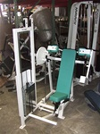 Chest Press,incline,pec fly,back extension,used equipment