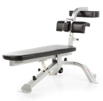 FreeMotion Epic Abdominal Bench