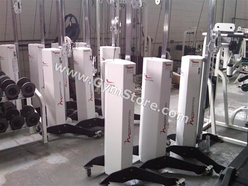 Freemotion Cable Column Functional Trainer Gymstore Com