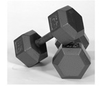 Troy Barbell Solid Hex Dumbbell Set - 55-100 Lb Set